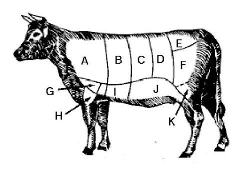 vaca_us
